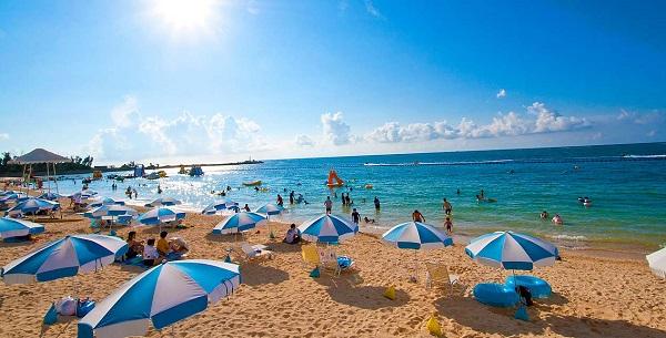 エックスオンザビーチ 内容